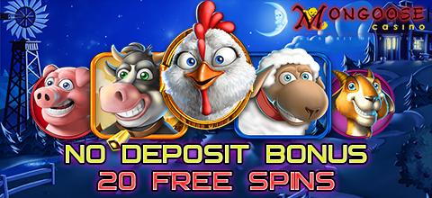 No deposit bonus in Mongoose Casino
