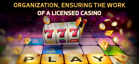 Organization, ensuring the work of a licensed casino
