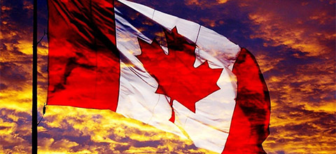 Canadian online gambling market grows